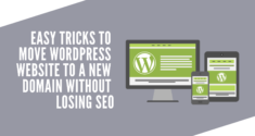 How to Move WordPress Website to a New Domain without Losing SEO