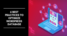6 Best Practices to Optimize WordPress Database