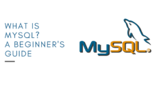 What is MySQL? A Beginner's Guide